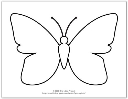 Large Butterfly Template 1