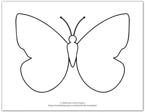 Large Butterfly Template 3