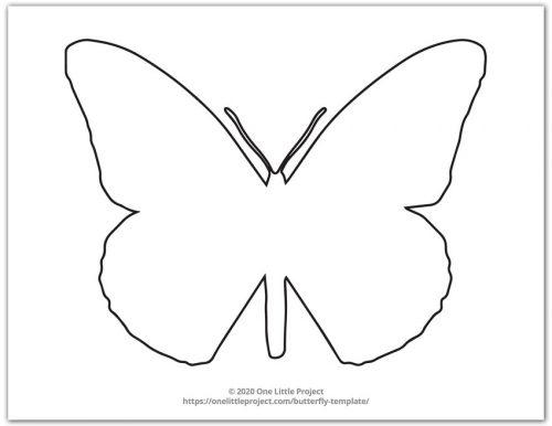 Large Butterfly Shape 4