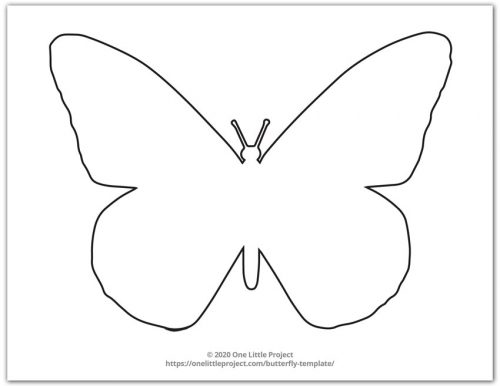 Large Monarch Butterfly Outline 5
