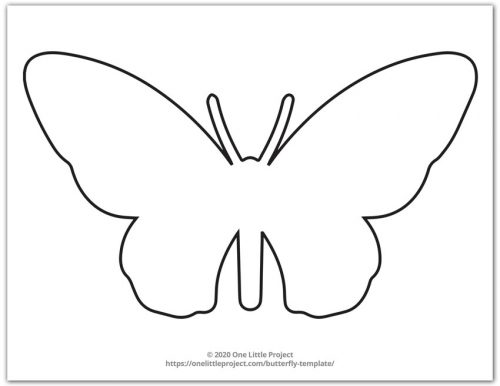 Large Butterfly Outline 6