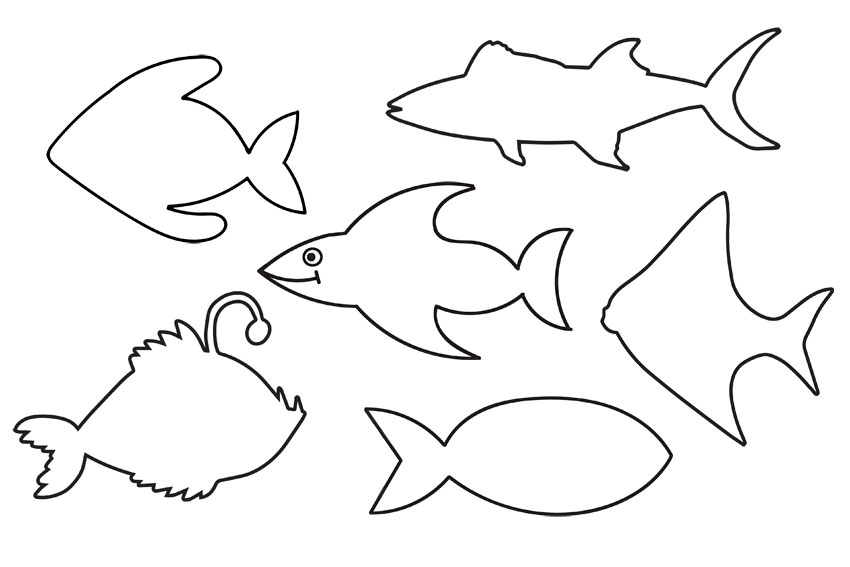 Various Fish Shapes