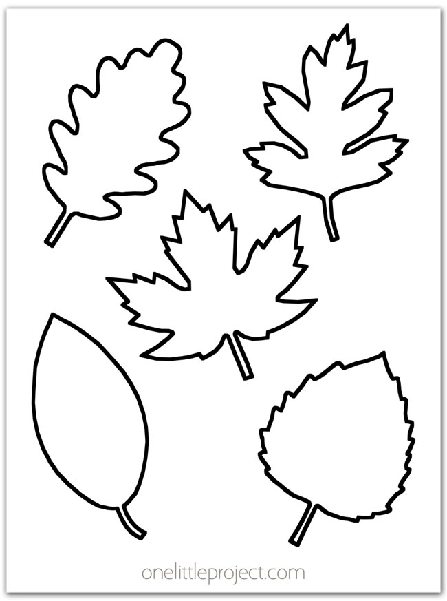 Leaf Template Free Printable Leaf Outlines - One Little Project
