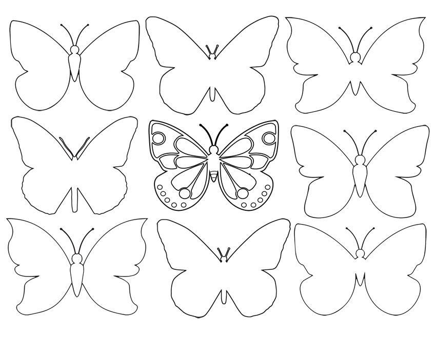 Many Butterfly Outlines