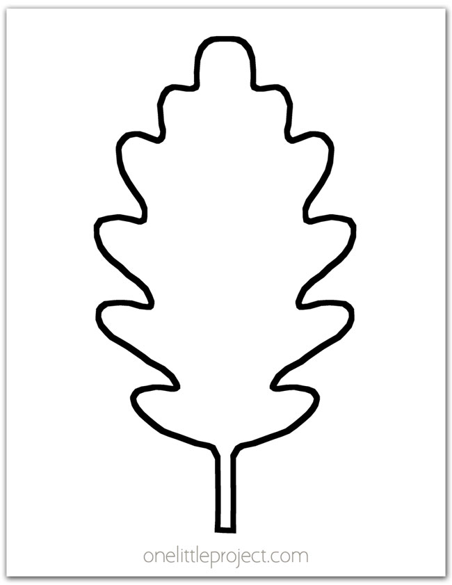 Oak Leaf Outline