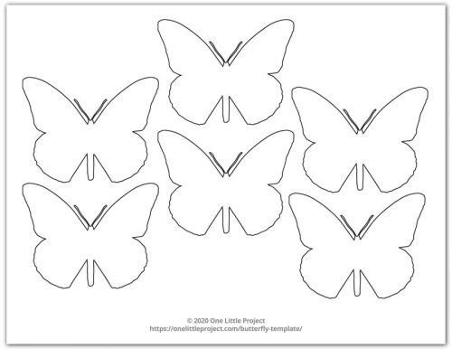 Small Butterfly Shape 4
